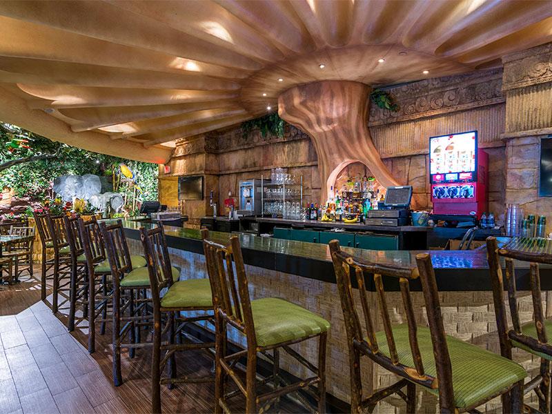 Rainforest Cafe Niagara Ny